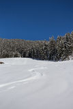 Χειμερινό τοπίο βουνών με την ηλιοφάνεια στοκ εικόνες