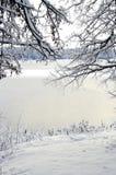 Χειμερινό τοπίο: η άποψη μέσω του πλαισίου του χιονώδους κλάδου Στοκ Εικόνες