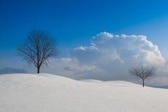 Χειμερινό τοπίο κάτω από το μπλε ουρανό Στοκ φωτογραφίες με δικαίωμα ελεύθερης χρήσης