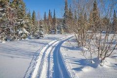 Χειμερινό τοπίο με έναν δρόμο σκι μεταξύ snowdrifts στο δάσος Στοκ Εικόνες