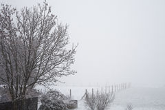 Χειμερινό τοπίο με τα δέντρα και το χιόνι Στοκ φωτογραφία με δικαίωμα ελεύθερης χρήσης
