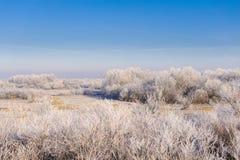 Χειμερινό τοπίο με τα δέντρα Στοκ Φωτογραφίες