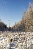Χειμερινό τοπίο με τα δέντρα και τις θέσεις Οι στυλοβάτες και τα καλώδια κοντά στο δάσος το χειμώνα στον παγετό Στοκ Εικόνες