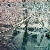 Χειμερινό τοπίο με τα μέρη του χιονιού Στοκ Εικόνες