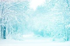 Χειμερινό τοπίο με τα μέρη του χιονιού Στοκ φωτογραφία με δικαίωμα ελεύθερης χρήσης