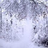 Χειμερινό τοπίο με τα μέρη του χιονιού Στοκ εικόνα με δικαίωμα ελεύθερης χρήσης