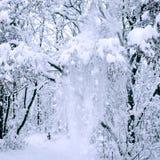 Χειμερινό τοπίο με τα μέρη του χιονιού Στοκ φωτογραφίες με δικαίωμα ελεύθερης χρήσης