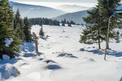 Χειμερινό τοπίο με την ομίχλη στα γιγαντιαία βουνά Στοκ φωτογραφία με δικαίωμα ελεύθερης χρήσης