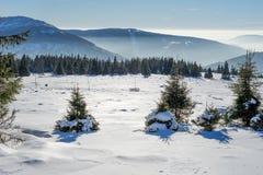 Χειμερινό τοπίο με την ομίχλη στα γιγαντιαία βουνά Στοκ εικόνες με δικαίωμα ελεύθερης χρήσης