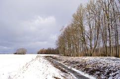 Χειμερινό τοπίο με την τάφρο τάφρων κοντά στο δάσος Στοκ Εικόνες