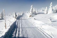 Χειμερινό τοπίο με τον τροποποιημένο διαγώνιο να κάνει σκι χωρών τρόπο Στοκ εικόνα με δικαίωμα ελεύθερης χρήσης