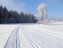 Χειμερινό τοπίο με τον τροποποιημένο διαγώνιο να κάνει σκι χωρών τρόπο Στοκ φωτογραφία με δικαίωμα ελεύθερης χρήσης