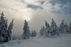 Χειμερινό τοπίο με το δάσος βουνών στοκ φωτογραφία με δικαίωμα ελεύθερης χρήσης