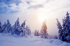 Χειμερινό τοπίο με το δάσος βουνών στοκ εικόνες