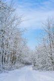 Χειμερινό τοπίο με το δρόμο και το δάσος στοκ εικόνα με δικαίωμα ελεύθερης χρήσης