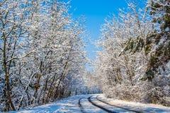 Χειμερινό τοπίο με το δρόμο και το δάσος στοκ εικόνες