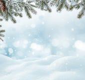 Χειμερινό τοπίο με το χιόνι και τα χριστουγεννιάτικα δέντρα Στοκ Εικόνα
