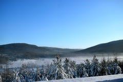 Χειμερινό τοπίο με fir-trees στο υπόβαθρο των λόφων Στοκ φωτογραφίες με δικαίωμα ελεύθερης χρήσης