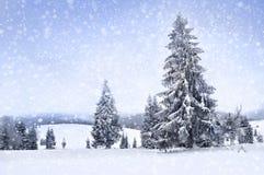 Χειμερινό τοπίο νεράιδων με τα δέντρα και τις χιονοπτώσεις έλατου Χριστούγεννα GR Στοκ Φωτογραφίες