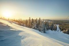 Χειμερινό τοπίο νεράιδων με τα χιονισμένα δέντρα Στοκ εικόνες με δικαίωμα ελεύθερης χρήσης