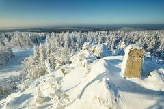 Χειμερινό τοπίο νεράιδων με τα χιονισμένα δέντρα Στοκ Φωτογραφίες