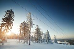 Χειμερινό τοπίο νεράιδων με τα χιονισμένα δέντρα Στοκ φωτογραφίες με δικαίωμα ελεύθερης χρήσης