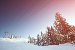 Χειμερινό τοπίο νεράιδων με τα χιονισμένα δέντρα Στοκ Φωτογραφία