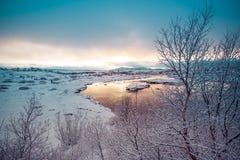 Χειμερινό τοπίο ξημερωμάτων στοκ εικόνα με δικαίωμα ελεύθερης χρήσης