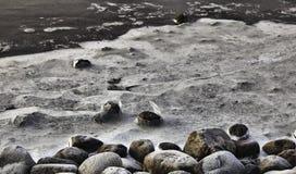 Χειμερινό τοπίο. Πάγος στις πέτρες, Wadden θάλασσα, Esbjerg, Δανία Στοκ φωτογραφίες με δικαίωμα ελεύθερης χρήσης