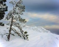 Χειμερινό τοπίο στα βουνά Στοκ Εικόνα