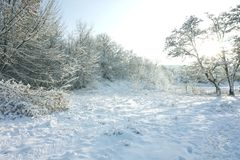Χειμερινό τοπίο στα πλαίσια ενός φωτεινού ουρανού Στοκ φωτογραφίες με δικαίωμα ελεύθερης χρήσης