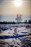 Χειμερινό τοπίο στην κεντρική Ρωσία Στοκ Φωτογραφίες