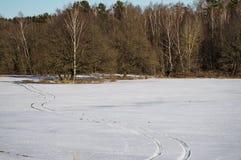 Χειμερινό τοπίο στη Ρωσία (περιοχή Kaluga) Στοκ φωτογραφία με δικαίωμα ελεύθερης χρήσης