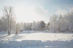 Χειμερινό τοπίο στη Σιβηρία στοκ φωτογραφία με δικαίωμα ελεύθερης χρήσης