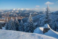 Χειμερινό τοπίο στη Σλοβακία Στοκ Εικόνες