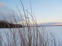 Χειμερινό τοπίο στη φύση χιονιού Στοκ Εικόνα