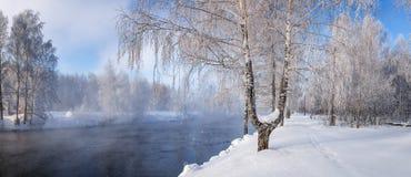 Χειμερινό τοπίο στον ποταμό Ural με την ομίχλη και δέντρα στο χιόνι, Ρωσία, στοκ εικόνα