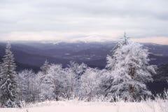 Χειμερινό τοπίο στο μεγάλο Arber Στοκ Εικόνα