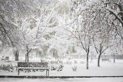 Χειμερινό τοπίο στο πάρκο στοκ εικόνα