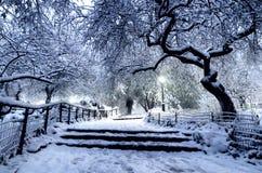 Χειμερινό τοπίο στο Central Park πόλη Νέα Υόρκη ΗΠΑ στοκ φωτογραφίες με δικαίωμα ελεύθερης χρήσης