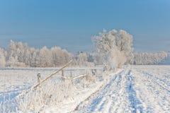 Χειμερινό τοπίο το χιόνι δέντρων που τυλίγονται με και το δρόμο Στοκ εικόνες με δικαίωμα ελεύθερης χρήσης