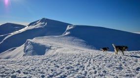 Χειμερινό τοπίο των αποκλεισμένων από τα χιόνια κορυφών Στοκ φωτογραφία με δικαίωμα ελεύθερης χρήσης