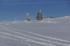 Χειμερινό τοπίο Vitosha του βουνού, περιοχή πόλεων της Sofia, της Βουλγαρίας στοκ εικόνα