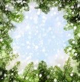 Χειμερινό υπόβαθρο με τον κλαδίσκο χριστουγεννιάτικων δέντρων Στοκ Εικόνα