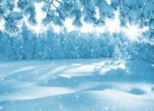 Χειμερινό φωτεινό υπόβαθρο Στοκ εικόνα με δικαίωμα ελεύθερης χρήσης