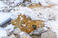 Χειμερινό χιόνι και σύσταση πετρών Πλαισιωμένο υπόβαθρο με τις πέτρες PA Στοκ Εικόνες