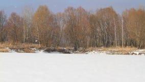 Χειμερινό χιόνι πέρα από την παγωμένη λίμνη απόθεμα βίντεο