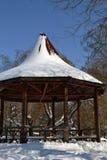 Χειμερινό όνειρο στις 5 Μαρτίου Στοκ εικόνα με δικαίωμα ελεύθερης χρήσης