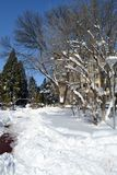 Χειμερινό όνειρο την 1η Μαρτίου Στοκ Εικόνα