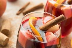 Χειμερινό sangria με τα εσπεριδοειδή, τα μήλα και την κανέλα στοκ εικόνες με δικαίωμα ελεύθερης χρήσης